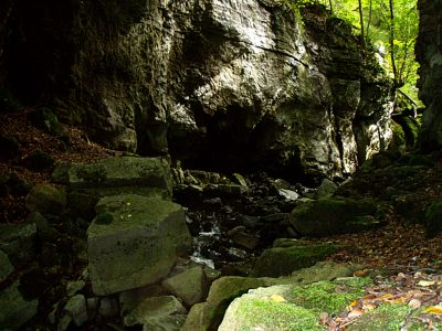 Shakespear's Cave Entrance - Photo by Barry Burn