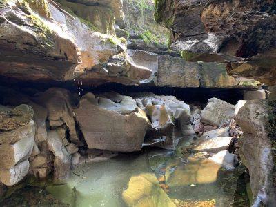 Nedd Fechan Gorge